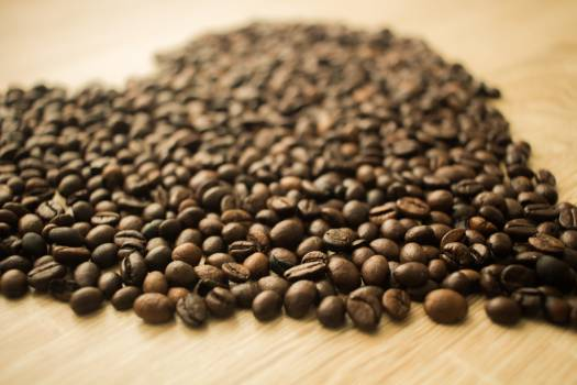 Coffee Beans in a Camera Focus Phoot #42382