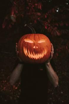Pumpkin Jack-o'-lantern Lantern #424108