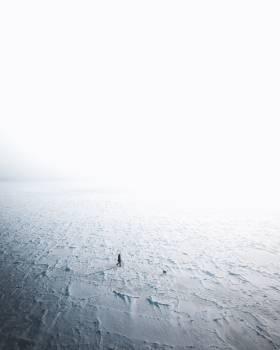 Sand Sea Ocean #424150
