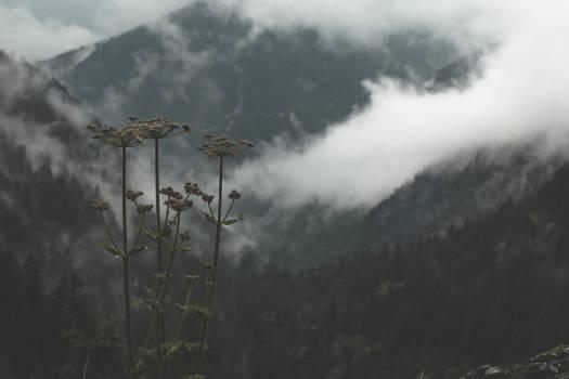 Landscape Scenic Clouds Free Photo #424365