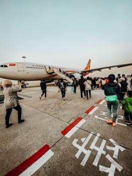 Airplane Aircraft Jet Free Photo