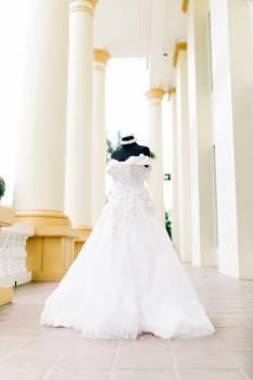 Boutique Bride Wedding Free Photo