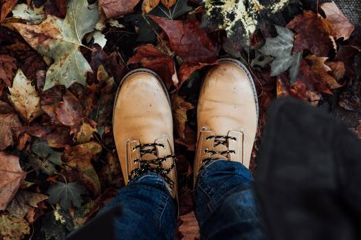 Clog Footwear Covering Free Photo