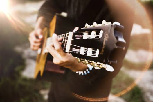 Guitar Electric guitar Musical instrument Free Photo