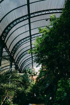 Arboretum Metal Roof #424725