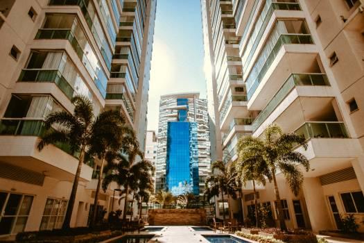 Plaza Architecture Building #424859