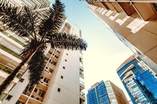 Architecture Building City #425087
