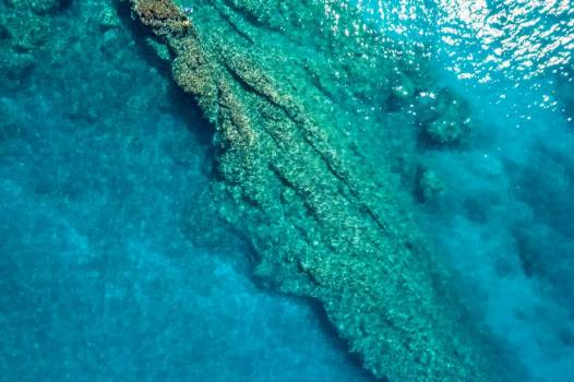 Two Tiny Little People Explore Coral Reef As Seen From Drone #425164