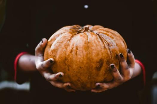 A Pumpkin Sits Between Two Hands #425261