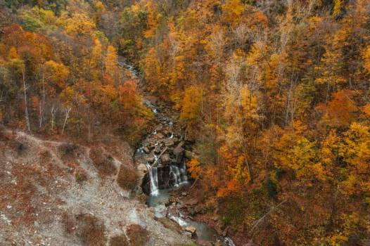 Overhead View Of Waterfall In Autumnal Forest #425266