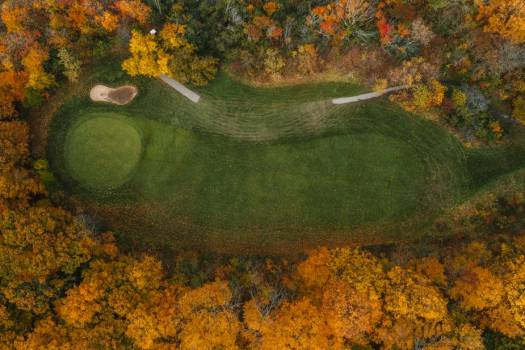 Hole Of Golf Course Surrounded By Yellow Trees #425268