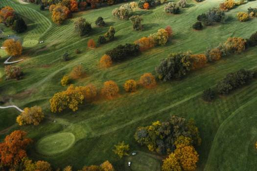 Aerial View Of Golf Course In Autumn #425269