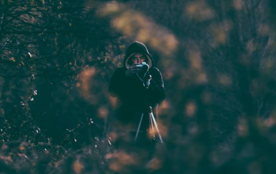 Person Wearing Black Hoodie in the Forest #42541