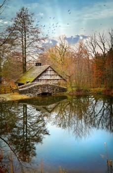 Old Cabin On The Lake #425536