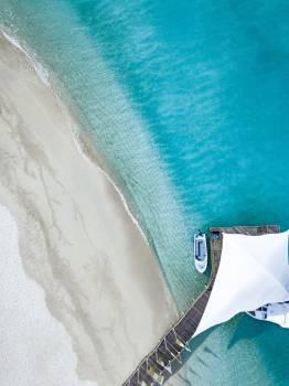 Water Sea Pad Free Photo