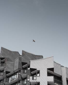 Roofing Sky Architecture Free Photo
