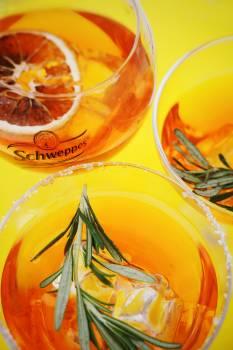 Honey Sweetening Glass Free Photo
