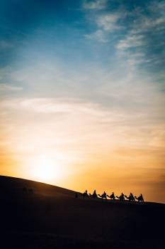 Sky Sun Sunset #426499