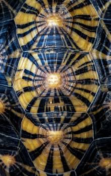 Design Dome Fractal #426577