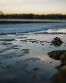 Ocean Beach Sand #426580