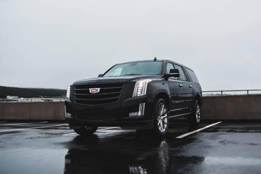 Car Motor vehicle Vehicle Free Photo