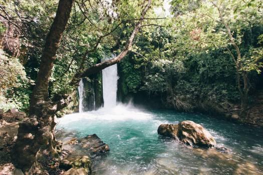 Waterfalls Besides Trees during Daytime #42708