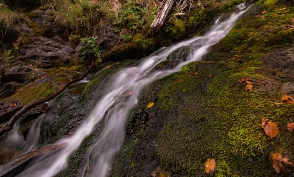 Green Mossy Rock Near on Waterfalls #42734