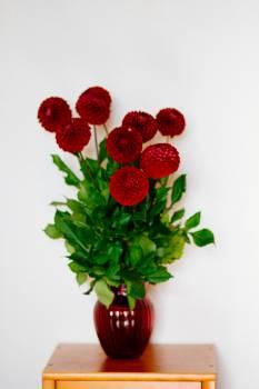 Red Flower Vase #43656