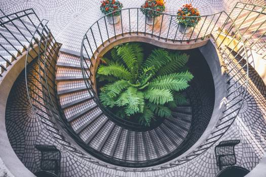 Spiral Staircase Outside Looking Down at Plants Daytime #44340