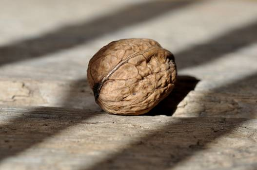 Brown Round Fruit on Grey Wooden Panel Free Photo