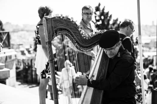 Metal Harp #44658