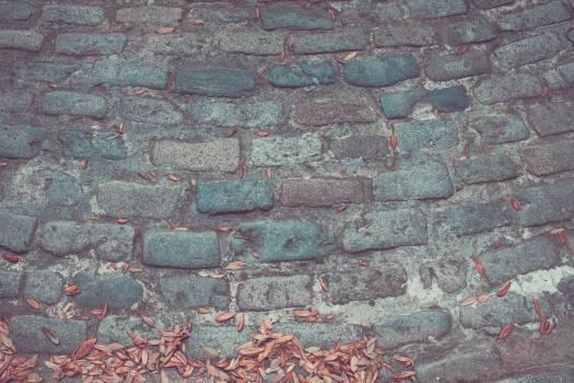 Grey Pavement #44664