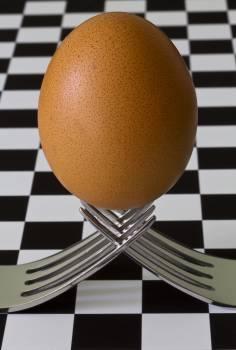Egg on 2 Forks Free Photo