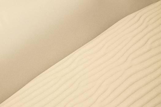 Sand dune Free Photo