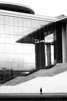 Person Walking Beside Curtain Wall Building During Daytime Free Photo