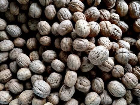 Brown Walnuts Free Photo