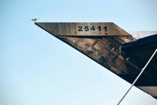 White Bird on Brown Wooden Frame #46148
