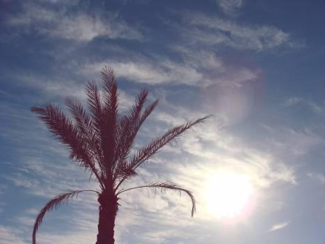 Sea sky beach clouds #47271