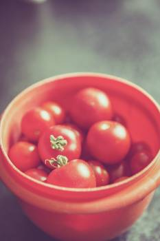 Red Tomato on Orange Round Plastic Container Free Photo