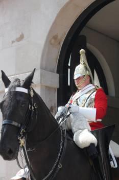 Man Wearing Silver Knight Helmet Riding on Black Horse in Landscape Photo #48288
