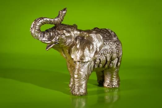 Elephant Free Photo