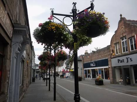 Dingwall flowers high street old town #52304