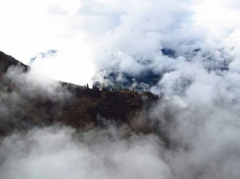 Allgau alpine fog kanzelwand #53013