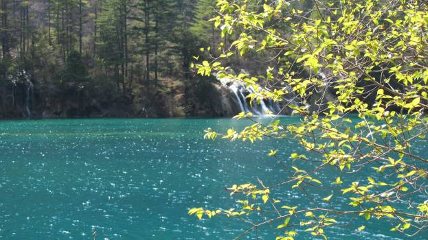 Background jiuzhaigou properties save #53298