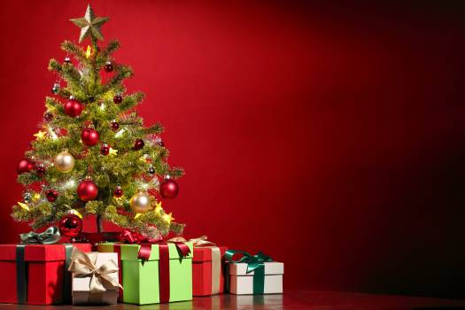 Christmas Tree at Home Free Photo