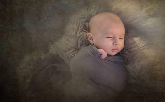 Baby baby boy boy caucasian Free Photo