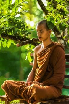 Bhikkhu buddhism meditating meditation #53599