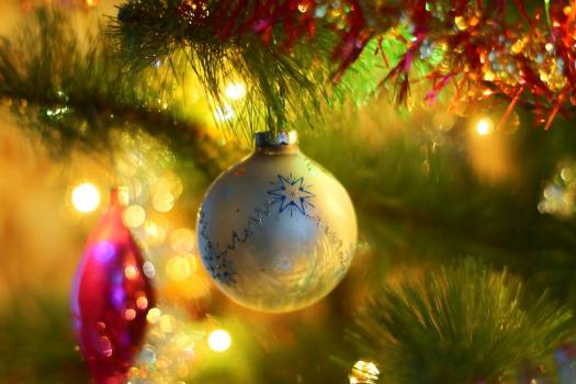 Celebration christmas christmas ornament christmas tree Free Photo