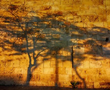 Black dark israel light Free Photo