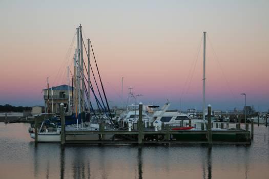 Bay boats dock gulf Free Photo